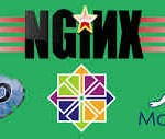nginx-php-mariadb-centos_5